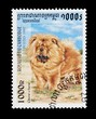 Cambodian stamp featuring a Chow chow dog